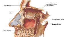 Những biến chứng có thể gặp khi nhổ răng khôn?